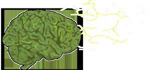 BrainLeft